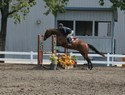 Brenda and Tex showing good form over fences at WCC.