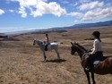 A trail ride at Tolay. Either that or they really got lost on the way to the Tin Bar.