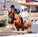 Carrie and Berkely  navigate one of the Cross Country Hunter courses at Watsonville.