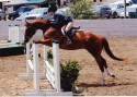 A/A ChampionsCarrie and Berkeley showing in the Adult Hunters at Watsonville, July 2004