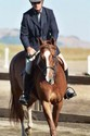 Hugh and Isabella on the way to winning their under saddle class