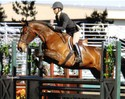 Jenny and Jubal at the Horse and Hound show in  Santa Rosa