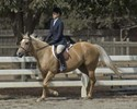Catherine & Sugar in their Flat Equitation Class