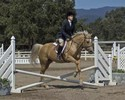 Catherine & Sugar in their Hunter over Fences round