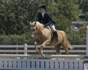 Sugar navigates the Warm-up Hunter course and Catherine comes along for the ride.