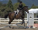 Jamie Lee and Richard on their way to one of the three blue ribbons they won at the Napa Valley Show.