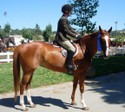 Pippa and Issabella won the Adult Amateur Hunter Under Saddle class.