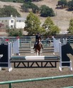 Pippa on course in the 3-phase EMO Equitation Challenge, where she and Issabella finished 7th overall.