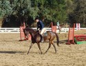Hugh and June Bug do flatwork during the clinic.