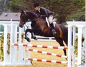 Joan and Syrah placed fourth in the Adult Jumper Classic