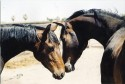 Pretty BabiesWoody and June Bug as three year olds.